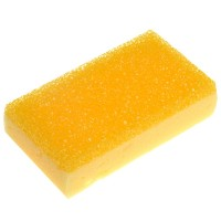 Ucare Bug and Tar Remover Sponge