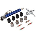 Puncture Kits and Valve Repair