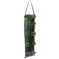 Silverline Hanging Growing Tube 700mm x 220mm