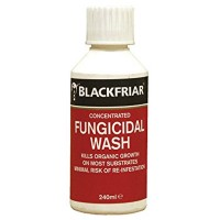 Blackfriar Concentrated Fungicidal Wash - 240ml